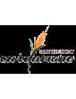 Pastificio Cardamone
